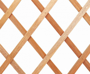 Treillage Extensible - Trelliwood bois - 150 x 50 cm