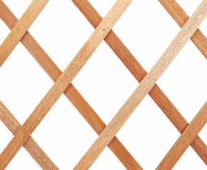 Treillage Extensible - Trelliwood bois - 100 x 200 cm