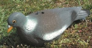 Appelant Pigeon Palombe - Bernizan - plastique