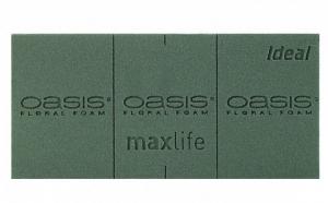 Briques de mousse florale - Oasis Ideal - vert - 23x11x8 cm - x20