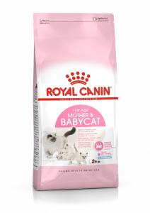 Croquettes pour chat - Royal Canin - Chatte et chaton - 4 kg