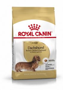 Aliment chien - Royal Canin - Dachshund Teckel - 1,5 kg