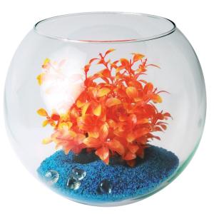 Aquarium boule soufflée - Zolux - 6.5 L