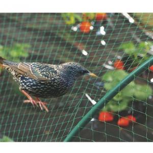 Filet de protection oiseaux - Téragile - 8 x 10 m