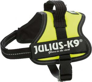 Julius - Mini-Mini/XS: 40–53 cm/22 mm, vert fluo