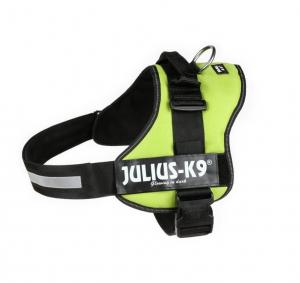 Julius - 3/XXL: 82–116 cm/50 mm, vert fluo