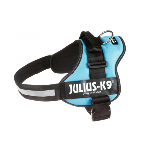 Julius - 1/L: 66–85 cm/50 mm, océan