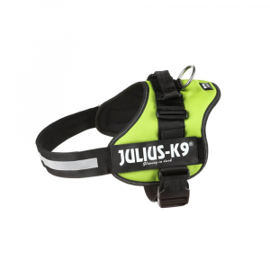 Julius - 2/XL: 71–96 cm/50 mm, vert fluo