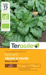Epinard géant d'hiver race verdil bio -10g - Teragile