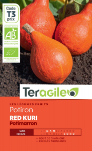 Potiron red kuri bio - 6g - Teragile