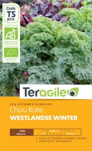 Chou kale Westland se winter bio - 2.3g- Teragile