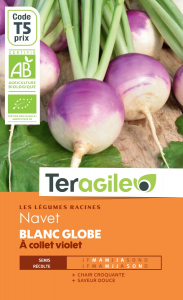 Navet blanc globe à collet violet bio -5g - Teragile