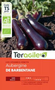 Aubergine de barbentane bio - 0.4g - Teragile