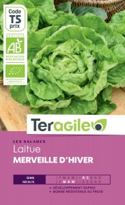 Laitue merveille d'hiver bio - 2.5g - Teragile