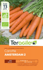 Carotte amsterdam 2 bio - Graines - Teragile