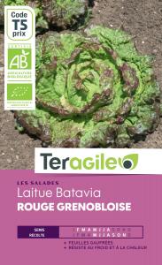 Laitue batavia rouge grenobloise bio - 2g - Teragile