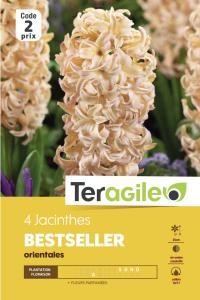 Jacinthe or Best Seller - Calibre 16/17- X4