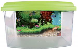 Aqua Travel Box II 22 cm Zolux - Boite de transport pour poissons