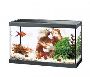 Aquarium Ciano 20