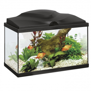 Aquarium Ciano 20 Light