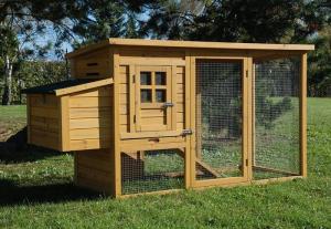 Poulailler cottage 2-3 poules