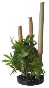 Plante Bambou support noir