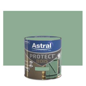 Peinture protect'Bois - Astral - Satin - Vert provence - 0.5 L