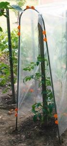 Tuteur pour tomates Tomato - Nortene - 1,80 m