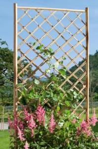 Treillis Bamboo - Droit - 50 x 170 cm