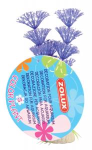Plante Color Plant Fluo Taille S