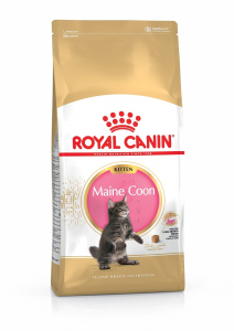 Croquettes pour chaton - Royal Canin - Kitten Maine Coon - 4 kg