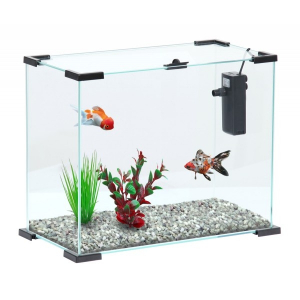 Aquarium First 24 Nanolife Zolux 23 L - Noir