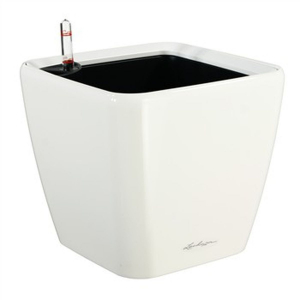 Pot Quadro LS 35 - All in One Set - Lechuza - Ø 35 x h 33 cm - Blanc brillant