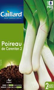 Poireau Carentan 2 - Graines - Caillard