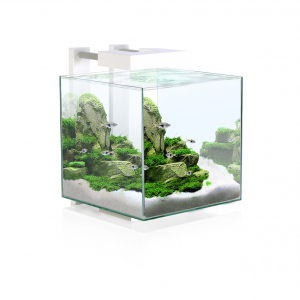 Aquarium Nexus 15 LED - Ciano - 14 L - Blanc