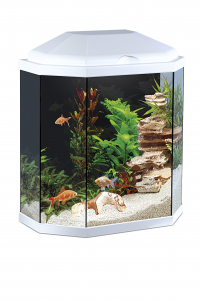 Aquarium Ciano 30 Light White
