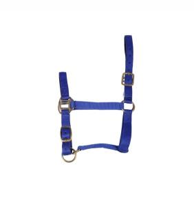 Licol nylon pour cheval - Haut de gamme - Bleu