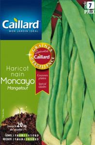 Haricot nain mangetout Moncayo - Graines - Caillard