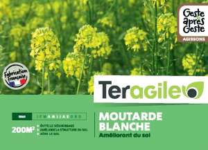 Moutarde blanche 500gr - Teragile