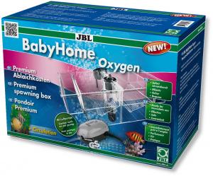 Pondoir Premium - Baby Home Oxygen - JBL