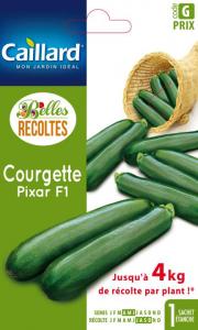 Courgette pixar hybride F1 - Caillard