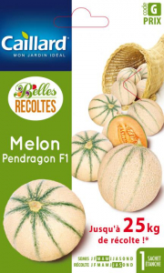Melon pendragon hybride F1 - Graines - Caillard