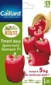 Poivron piment doux Samson hybride F1 -Graines - Caillard