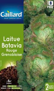 Laitue batavia rouge Grenobloise - Graines - Caillard