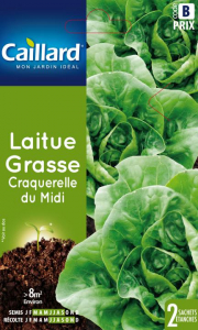 Laitue grasse Craquerelle du midi - Graines - Caillard