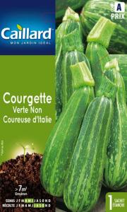 Courgette verte non coureuse d'Italie -Caillard