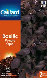 Basilic purple dark opal - Caillard