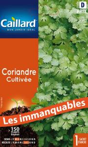 Concombre cultivée - Caillard