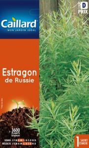 Estragon - Graines - Caillard