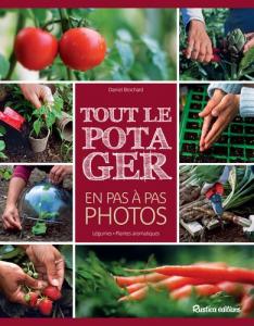 POTAGER PAS A PAS PHOTOS